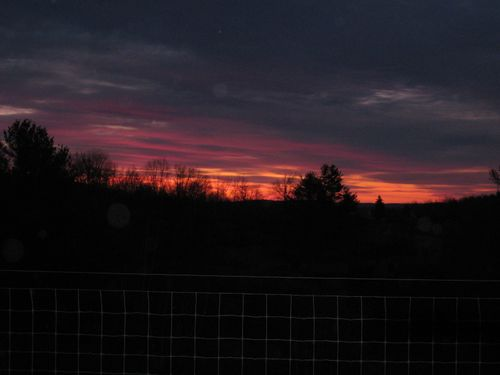 Sunrise from the birthing barn