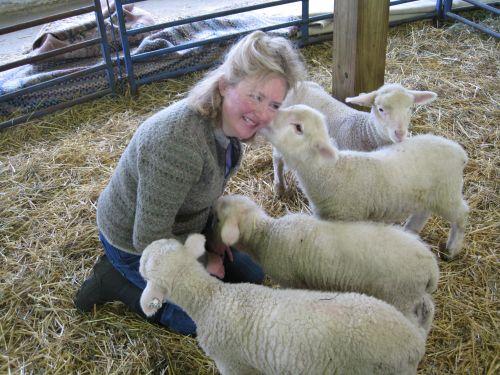 Lamb smooches IMG_3013