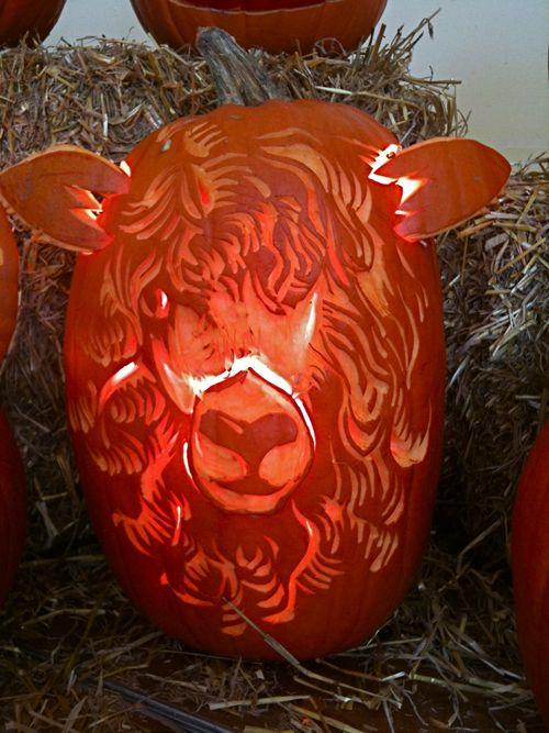Sheep-o-lantern