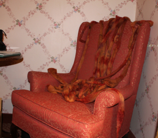 Roving chair