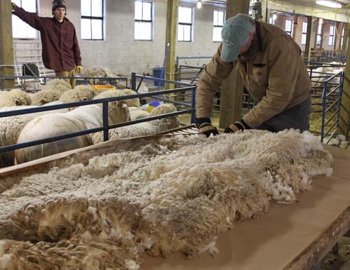 Fleece on skirting table