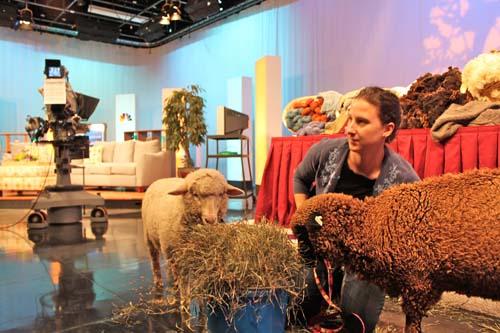 Lambs tv studio