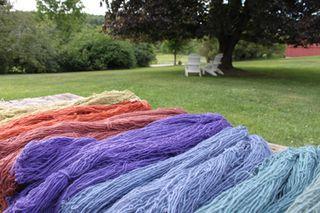 Foxfire fiber. sheep shares. upland wool alpaca 2010