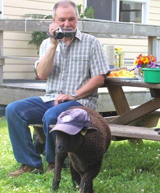 Foxfire fiber. sheep shares open house. mike mistral
