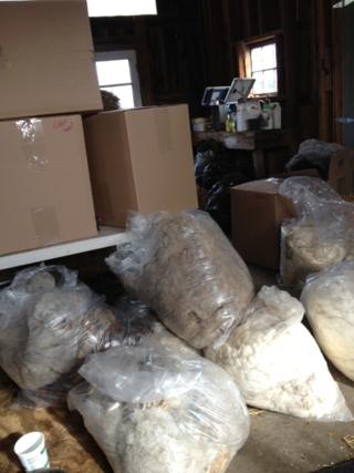 Boxes of fleeces. Foxfire Fiber
