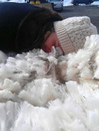 Irresistible Cormo Wool. Foxfire Fiber