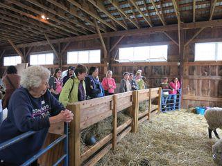 Fiber Foliage & Friends. Carriage Barn. Foxfire Fiber. Barbara Parry. Adventures in Yarn Farming