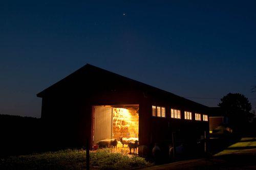 Evening chores. Ben Barnhart. Foxfire Fiber