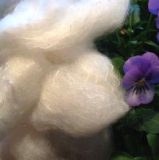 Cormo Silk Alpaca roving Foxfire Fiber